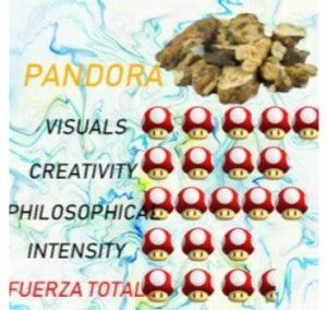 comprar TRUFAS-PANDORA- baratas