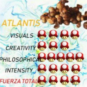 Comprar TRUFAS alucinógenas -ATLANTIS- En Oferta