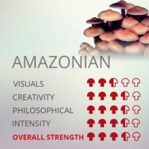 Kit De Cultivo De Setas Alucinógenas Amazonian Cubensis