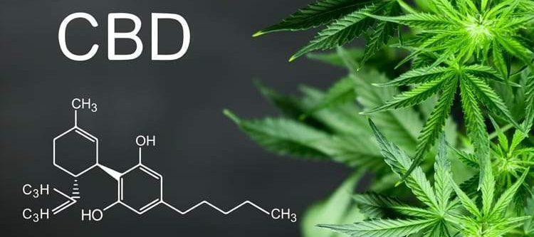 todo CBD Medicinal
